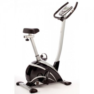 Bronze Exercise Bike